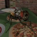 გადმოწერა Fly Simulator